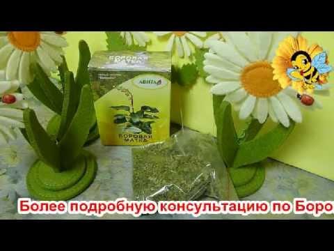 Фитовыпуск № 4. Женская трава БОРОВАЯ МАТКА