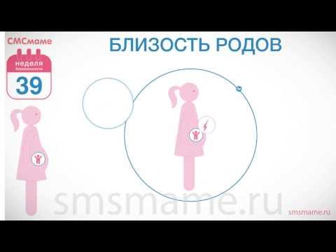 Шейки матки на 39 неделе беременности