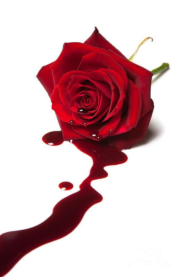 кровянистые выделения из влагалища
