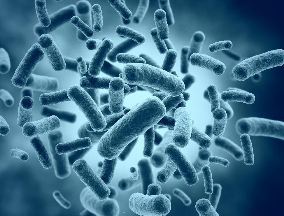 Попадание в рану инфекции