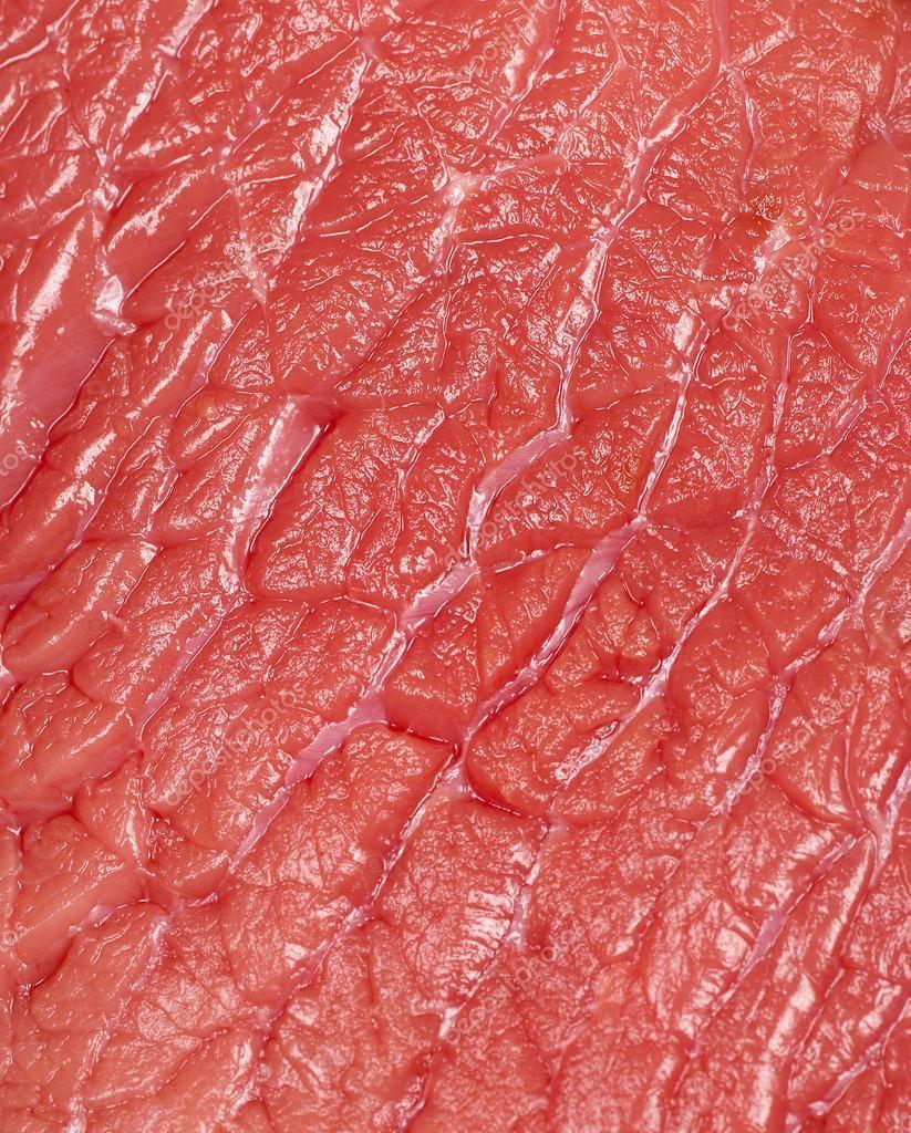 Волокна мышечной ткани