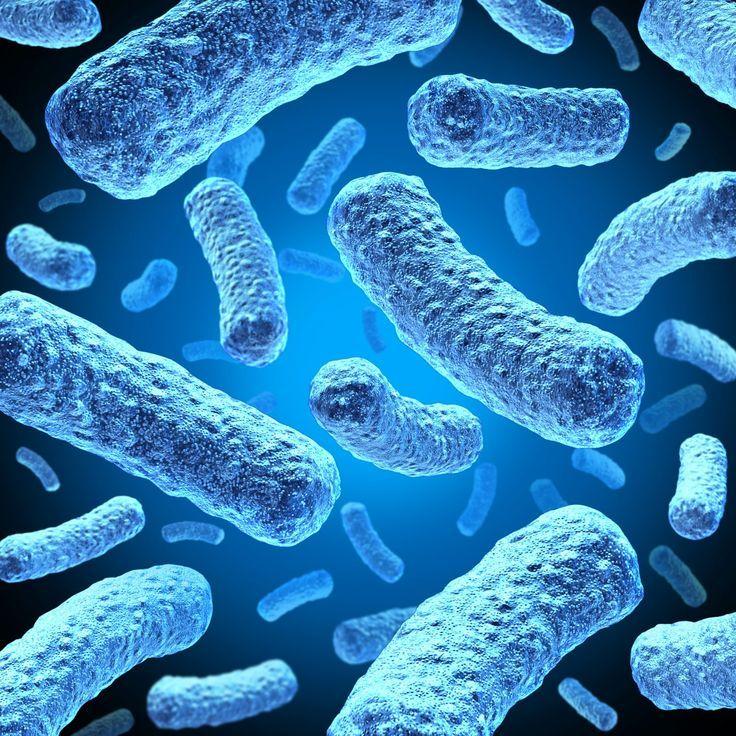 Хронические инфекции и ВПЧ
