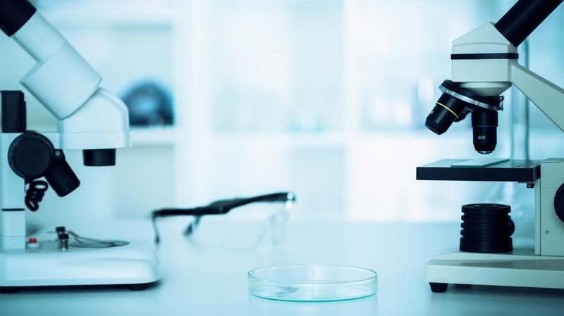 Что может выявить биопсия шейки матки?