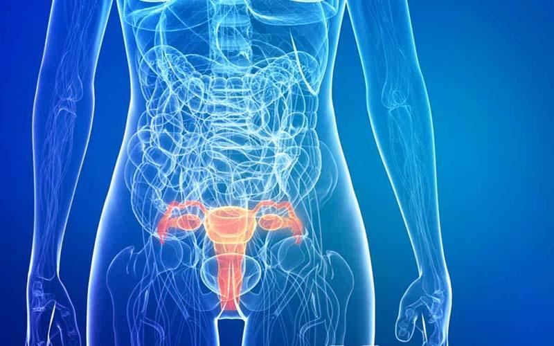 Причины развития аденокарциномы шейки матки