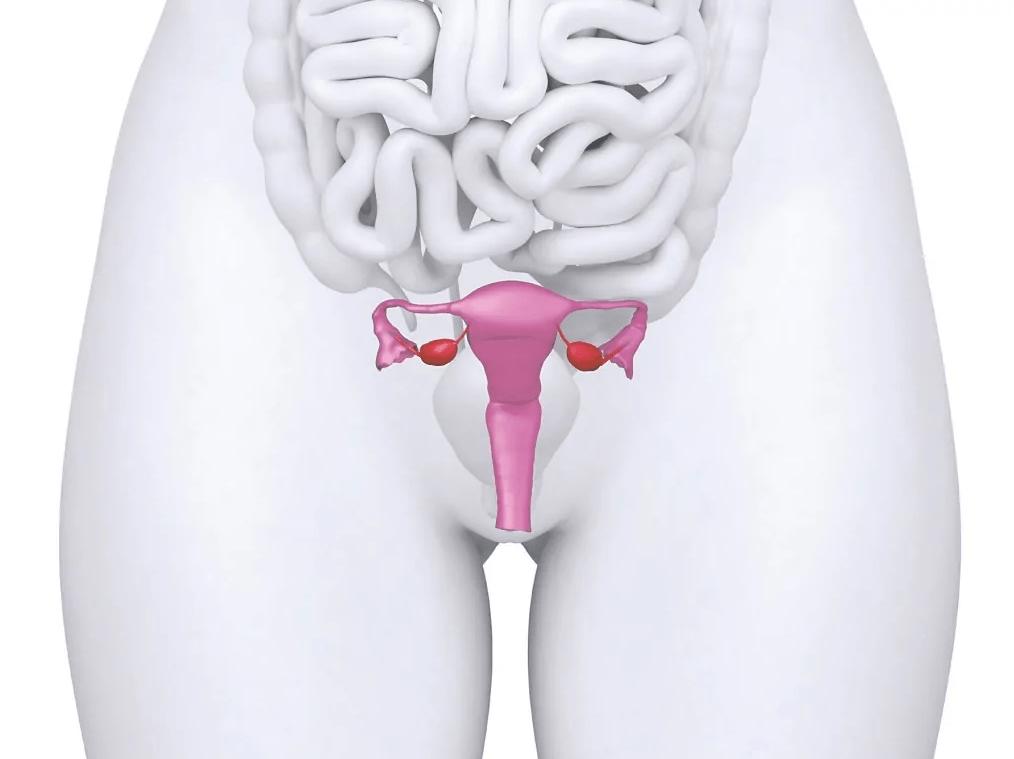 Операция при опущении передней стенки матки и влагалища с помощью сетки